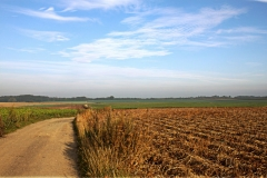 Waterloo Battlefield, Chemin du Plancenoit
