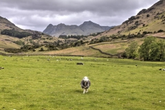 Little Langdale, Lake District