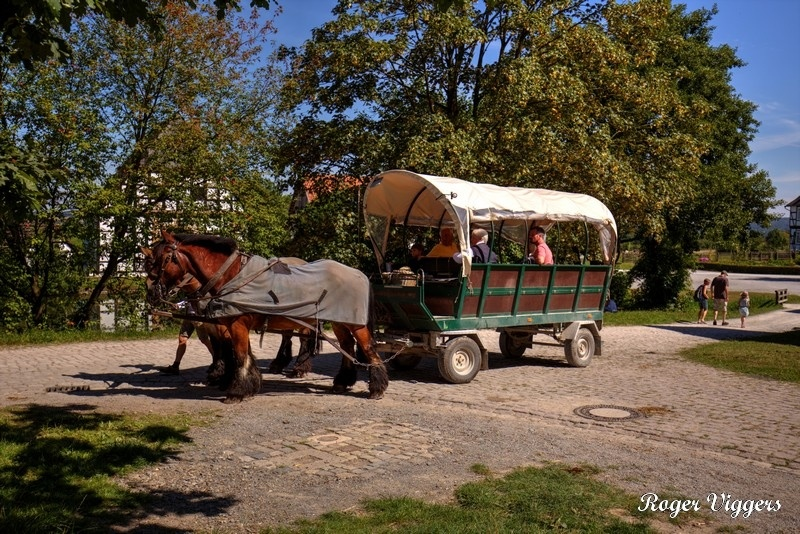 The carriage pulled by a pair of Westphalian draught horses waits for passengers at Paderborner Hof.