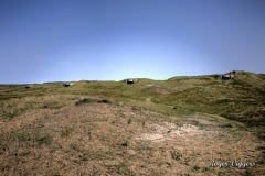 WW2 German defence bunkers, Hanstholm, Denmark
