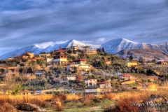 Krane, Albania