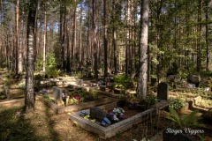 Sininõmme woodland cemetery