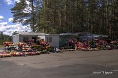Sininõmme cemetery flower sellers