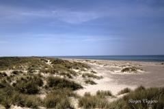 Northern tip of Denmark