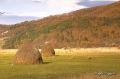 Iza Valley, Vadu Izei, Romania